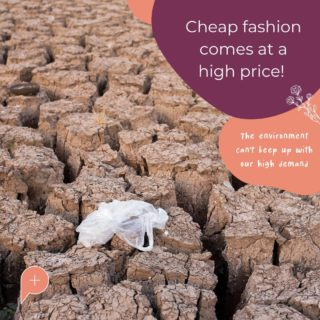 Why should fashion come at the expense of the environment?! There are so many ways that we can prolong the lifespan of a clothing item to keep it out of landfill. By setting up a shop through Populace Threads, you can sell and swap your second-hand clothing.  Live out your fashionista lifestyle without having to feel guilt from buying fast fashion.  #SustainableShopping #PopulaceThreads #ResaleIsTheNewRetail #FashionForward #Environment #ShopBetter #ShopSwapSell #CircularFashion #CircularEconomy